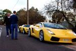 Lamborghini   Bill n Ted: 100 3508