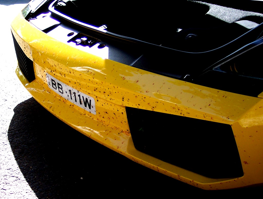 Lamborghini Eagle Start: - Eagle Start