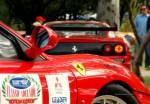 Adelaide   Classic Adelaide 2006: IMG 1664