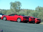 Exotic   Exotics in the Outback 2005: exotics-in-the-outback-2005-(90)