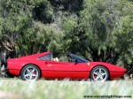 Ferrari _308 Australia Ferrari 308 GTSi Photoshoot: ferrari-308gtsi-(17)