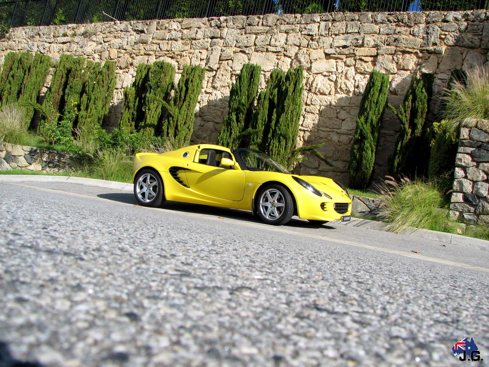 Lotus Looney Lotus Elise