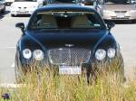 dingo Photos Perth Car Spotting: bentley-continental-gt-(11)