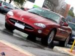 dingo Photos Perth Car Spotting: jaguar-xk8-(66)
