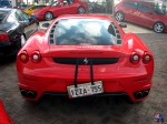 dingo Photos Perth Car Spotting: update5-(20)