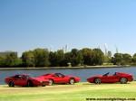 Ferrari   Ferrari 308 GTBi Photoshoot: mccallum-park-groupshot-(3)