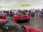 Ferrari enzo Australia Ferrari Concours 2006: WLD SSS082
