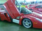 Ferrari enzo Australia Ferrari Concours 2006: WLD SSS093