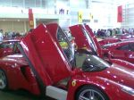 Ferrari enzo Australia Ferrari Concours 2006: WLD SSS094