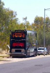 Exotics in the Outback 2006: finny-alice027