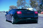 Lamborghini   Exotics in the Outback 2006: finny-alice049