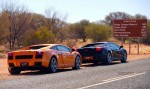 Gallardo   Exotics in the Outback 2006: finny-alice058