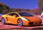 Exotics in the Outback 2006: finny-alice066