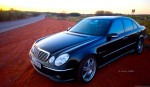 Mercedes   Exotics in the Outback 2006: finny-alice130