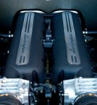 Outback   Exotics in the Outback 2005: 095 Cam-Gallardoengine2