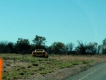 Top   Exotics in the Outback 2005: 294 Cam-Gallardostopped