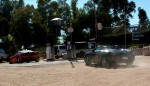 Outback   Exotics in the Outback 2005: 446 Cam-Filluptime