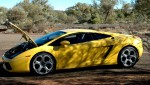 Back   Exotics in the Outback 2005: 580 Cam-Gallardo14