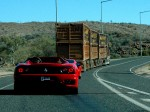 As   Exotics in the Outback 2005: 650 Cam-Chasingspider2
