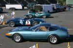 Ferrari daytona Australia Blue Italians: IMG 7070