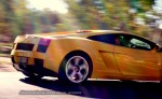 Exotics in the Outback 2005: 064 ash kdk 39