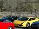 23   Exotics in the Outback 2005: 237 ash d70 132