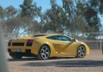 Exotics in the Outback 2005: 448 ash d70 226