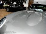Jaguar   Climb to The Eagle - 2008: IMG 0231