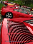 Ferrari National Rally 2007 - Concours d'Elegance: IMG 0884