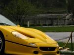 Ferrari f50 Australia Ferrari National Rally 2007 - Concours d'Elegance: IMG 1068
