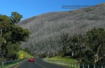 117   Ferrari National Rally 2007 - Snowy Mountains: IMG 1176