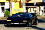 In   Bull Run - Lamborghini Club SA: IMG 2226
