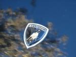 Lamborghini countach Australia tempy: IMG 2240