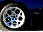 Bull Run - Lamborghini Club SA: IMG 2287-1