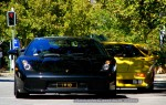 Adelaide   Bull Run - Lamborghini Club SA: Lamborghini Gallardo vs Diablo - front