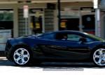 Adelaide   Bull Run - Lamborghini Club SA: IMG 2441