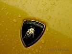 In   Lap of Tasmania 2007: Lamborghini Badge