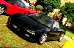Honda NSX Day - Nov 2009: IMG 4410-honda-nsx