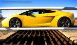 Lamborghini   Exotics in the Outback 2007:  Lamborghini Gallardo on Cattle Grid