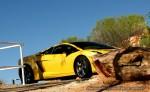 Gallardo   Exotics in the Outback 2007:  Lamborghini Gallardo