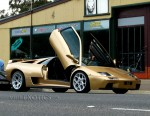 Lamborghini diablo Australia Lamborghini Club Run - 2008: IMG 9762