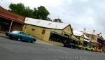 Lamborghini islero Australia Lamborghini Club Run - 2008: IMG 9779
