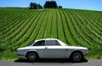 Bertone   Classic Adelaide 2007 - Lenswood: Alfa GTV