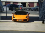 Brisbane   LP560 Launch: Lamborghini Gallardo