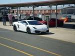 Brisbane   LP560 Launch: Lamborghini Gallardo LP560