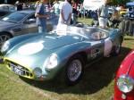 Cobra   Noosa Classic Car Show 07: P9230053