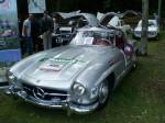 Gullwing   Noosa Classic Car Show 07: P9230069