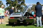 98octane Photos Autobella - Como Park 24 Febuary 2013: