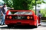23   Picnic with the Classics (Carlton, 23 Oct 2010): Ferrari F40 - rear 2 (Carlton, Vic, 23 Oct 2010)
