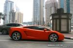 Lamborghini   Exotics in Dubai: Lamborghini Gallardo - A profile right